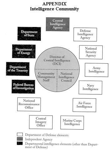 national intelligence estimates nies essay